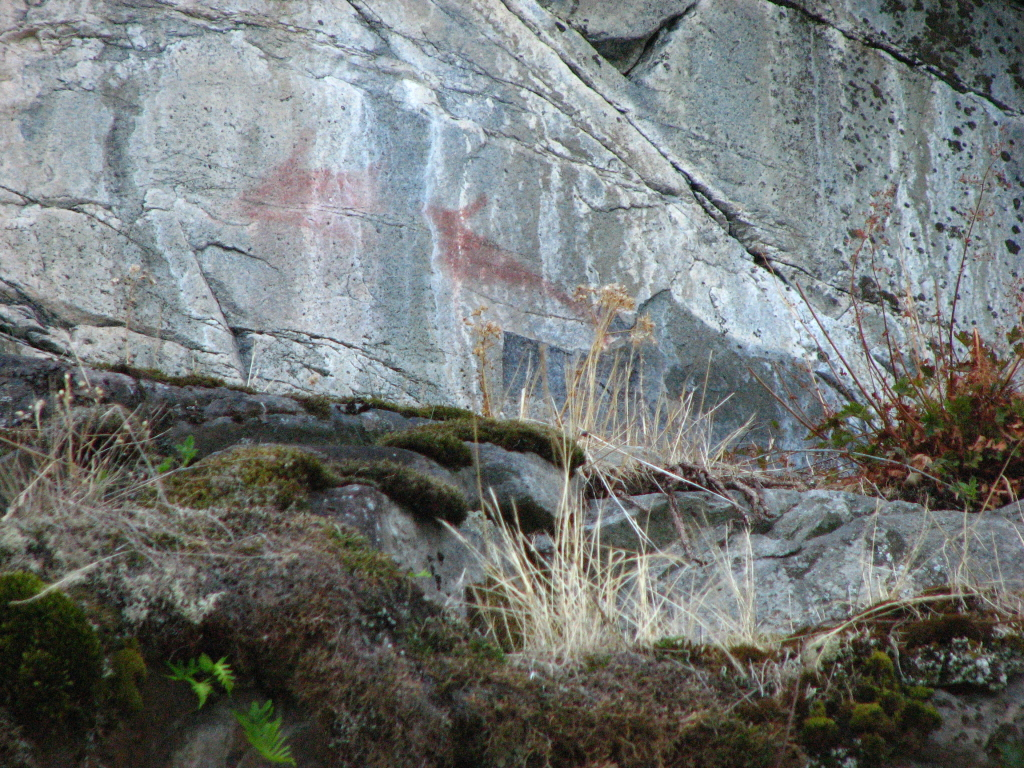 A fish or whale on the east coast of Cortes Isl, across from the entrance to Teakern Arm in Lewis Channel. Associated with it are a group of tally mark style lines, similar to some found in the entrance to Gorge Harbour.