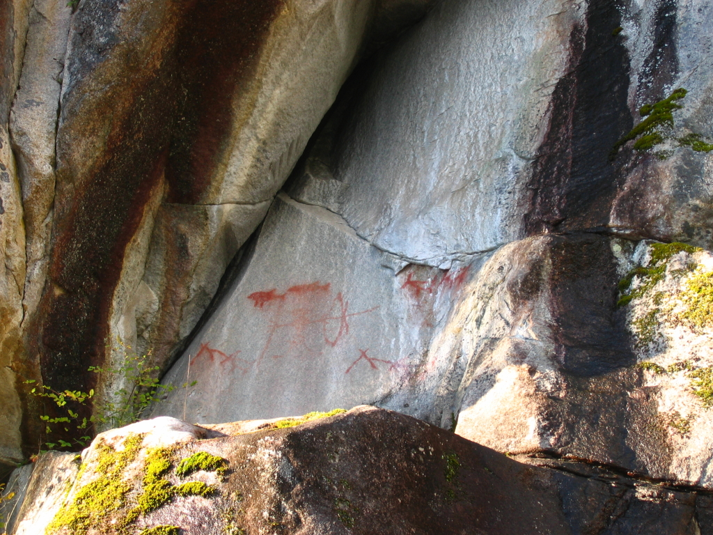Walsh Cove, in Waddington Channel has over a dozen pictographs. Some are easily recognizable as humans or fish. Others, as in the crossed lines and fallen V-shapes at the bottom right are a puzzle. Interestingly, these latter two images are also found in very faint pictographs at Granite Point, on north Quadra Island. Some have suggested the cross lines might represent fish traps. Whatever it was, the form would must have had a known meaning to the creators of both.