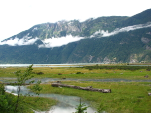 Bella Coola Valley